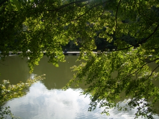 震生湖の紅葉