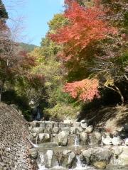 葛葉の泉の広場の川と紅葉