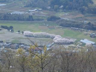 弘法山公園からの眺め